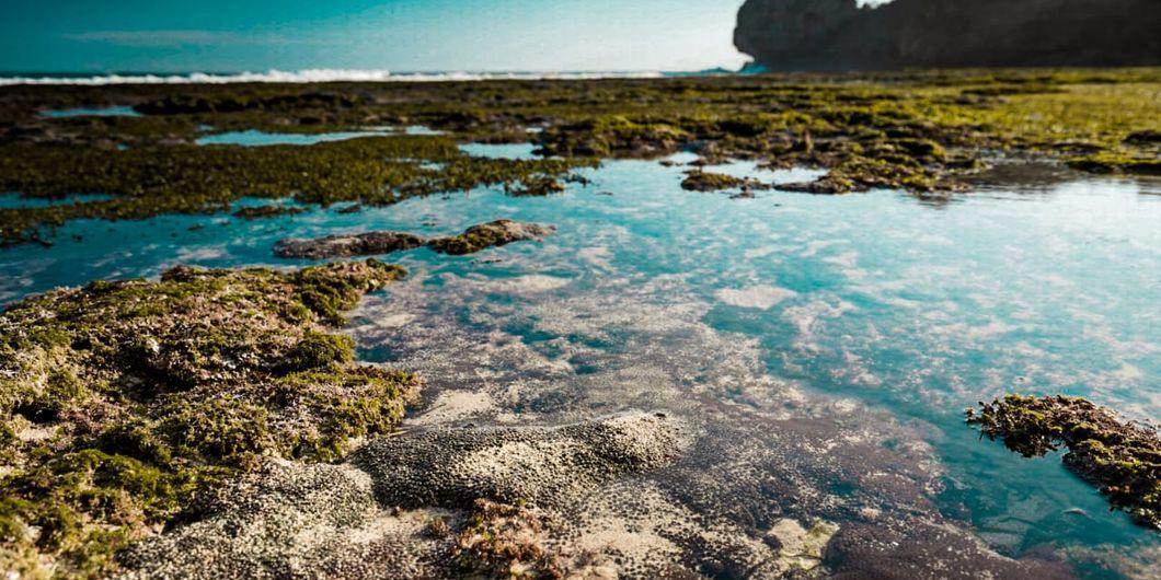Toyota Fortuner Hidden Beach, Permukaan Air Laut Pantai Ngedan yang Bersih
