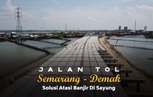 Jadi Tanggul Laut, Tol Semarang-Demak Diberi Matras Bambu 17 Lapis Pertama di Indonesia