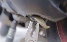 Jarang Yang Tahu, Fungsi Slang Kecil Bening di Motor Matic Bisa Selamatkan CVT Dari Air