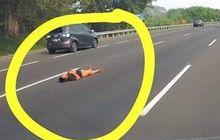 Viral Orang Rebahan di Ruas Jalan Tol Jakarta-Cikampek, Ini Kata Jasa Marga
