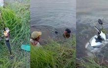 Bukannya Mujaer Atau Nila, Umpan Pancing Dilempar ke Sungai Dapatnya Honda BeAT