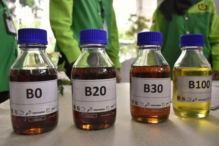 Ilustrasi bahan bakar Biodiesel B30