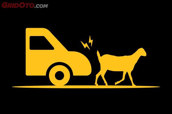 Ilustrasi tabrak hewan di jalan tol