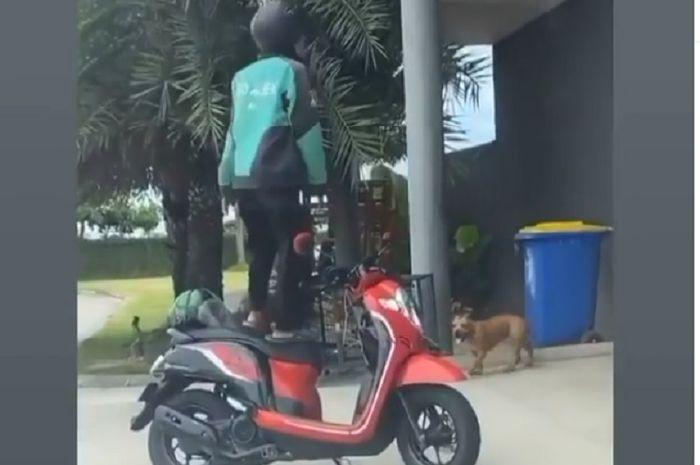 Driver ojol ketakutan pilih berdiri di motor karena ada anjing (Hasil tangkapan layar Instagram @dramaojol.id)