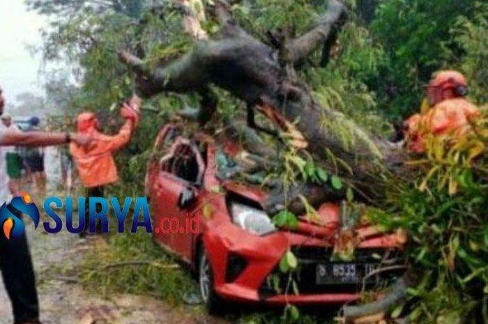 Toyota Calya remuk redam hingga atap ambles kejatuhan pohon di Bangkalan, Madura