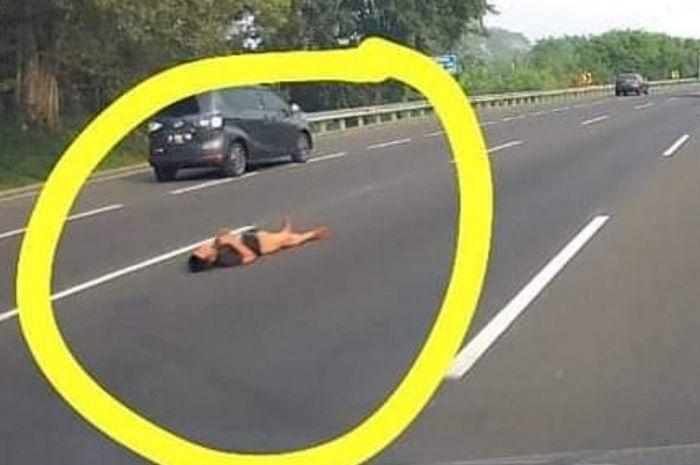 Viral seseorang beraring di jalan tol