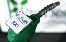 Biodiesel B20, 'Minuman' Yang 20 Persennya Campuran Minyak Kelapa